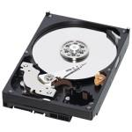 HDD 1000 GB; S-ATA II; 7200 RPM; 64 MB BUFFER; WESTERN DIGITAL; WD10EZEX; NOU
