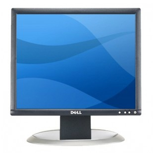 DELL 1704FP 17 inch