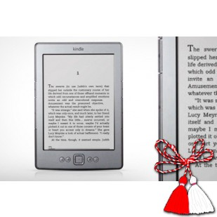 "EREADER KINDLE 4; 4GB HDD; 7""; SH"