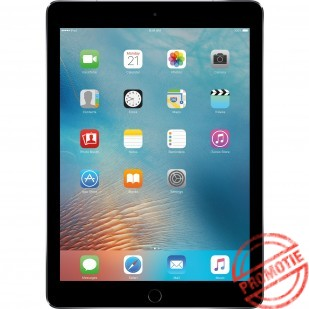 iPad (5th generation) WIFI 32GB GRAY